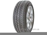 Avon Ice Touring 205/50 R17 93H